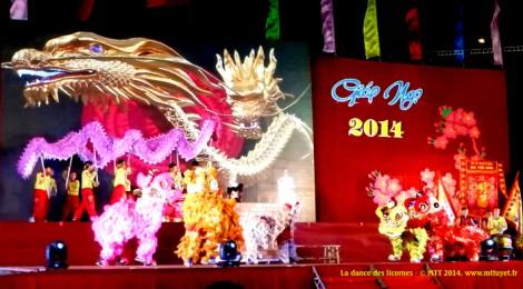 Chùm ảnh đêm Giao Thừa ở Quy Nhơn – Photos de la fête du Tết à  Quy Nhơn