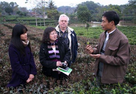 Mathilde Tuyết Trần trên đồi trồng chè Thái Nguyên, cơ sở của bác Trần Văn Thái. Ảnh: Báo Thái Nguyên