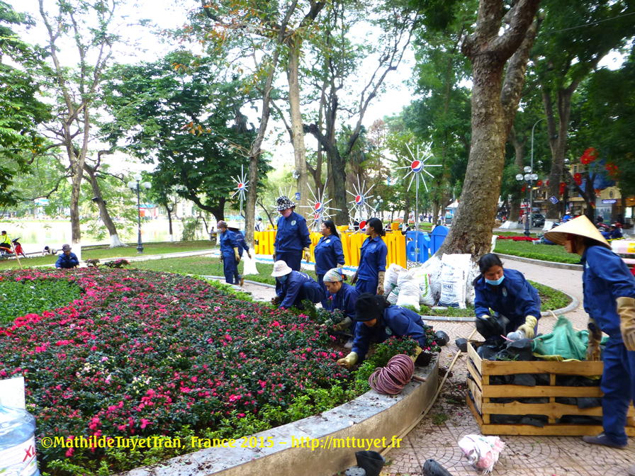 Les touristes étrangers s'étonnent en ne voyant que des femmes au travail, mais où sont les hommes ? Elles plantent les parterres géants de fleurs autour du lac, elles réparent les dalles cassées du trottoir, elles ramassent les ordures... Photo: ©MathildeTuyetTran, Hanoi 2015